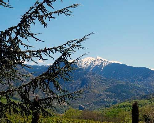 Vista de Pirineos